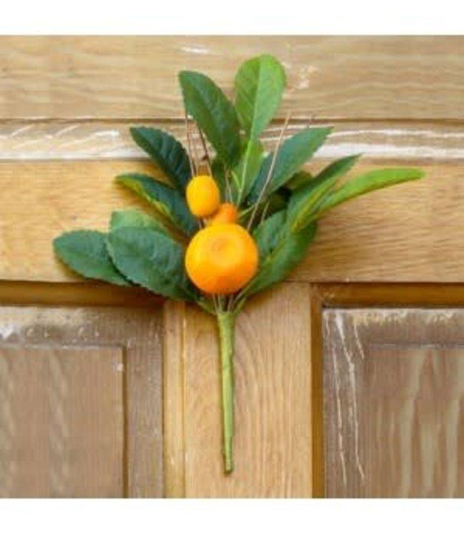 Park Hill Collections Citrus Pick