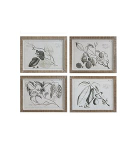 "Creative Co-Op Framed Fruit Branch Wall Decor 23"" x 18"""