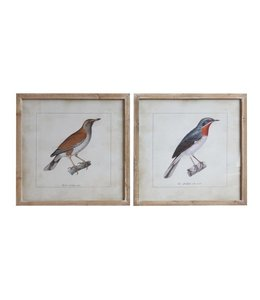 "Creative Co-Op 24"" Square Wood Framed Bird Decor"