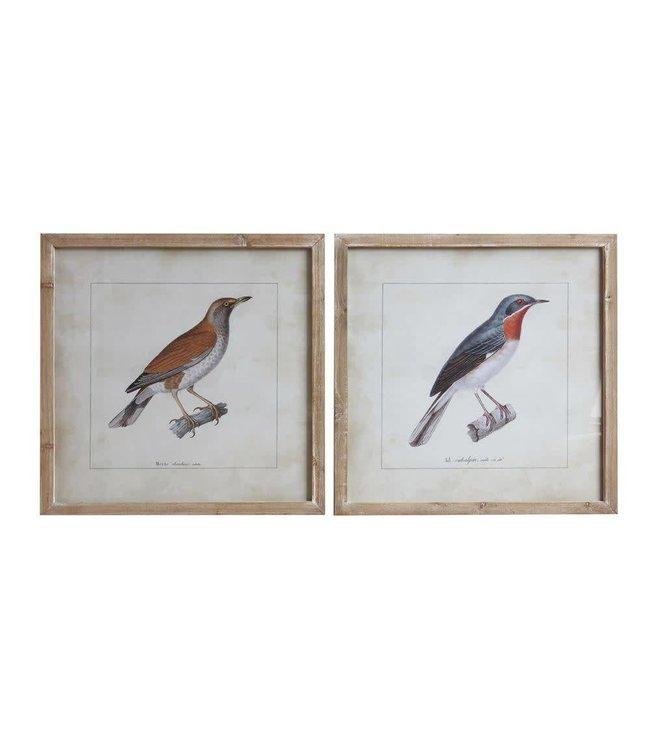 "Creative Co-Op 24"" Square Wood Framed Bird Decor"