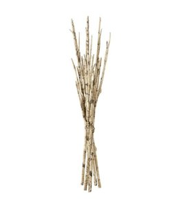 Faux Birch Branch Bundle