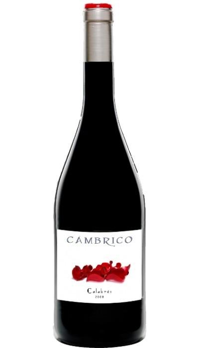 Wine Cambrico Calabres 2009 1.5L