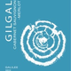 Wine Gilgal Winery Cabernet Sauvignon-Merlot Galilee 2016 Kosher