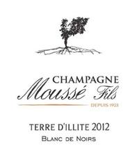 Sparkling Mousse Fils Champagne Brut Blanc de Noirs Terre D'Illite 2013