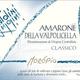 Wine Antolini Amarone della Valpolicella Moropio 2015