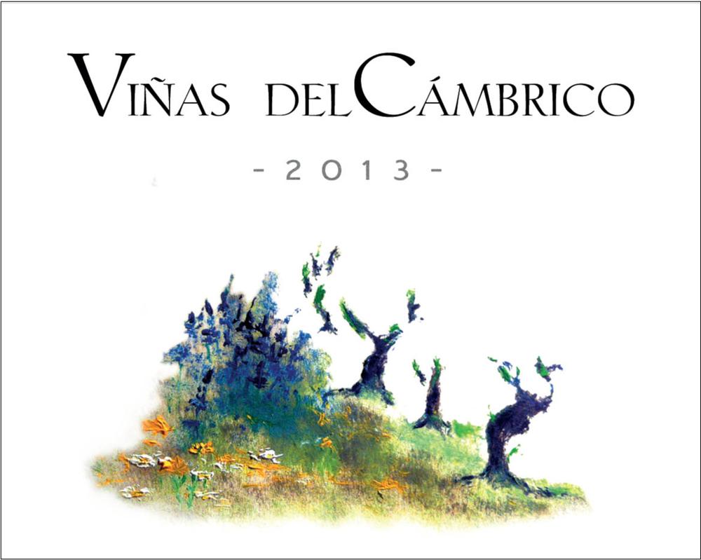 Wine Vinas del Cambrico 2013