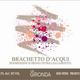 Wine La Gironda di Galandrino Brachetto d'Aqui 2018