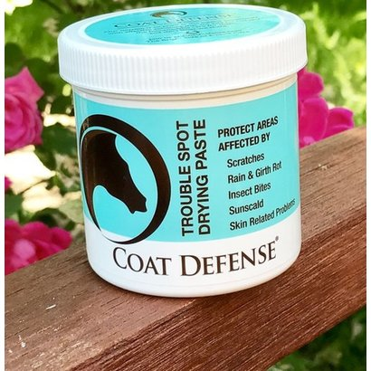 Coat Defense 24oz Paste