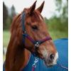 Horze Halter with Lead Rope