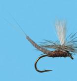 Parachute Extended Body Callibaetis