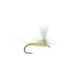 UMPQUA Parachute PMD Pale Yellow