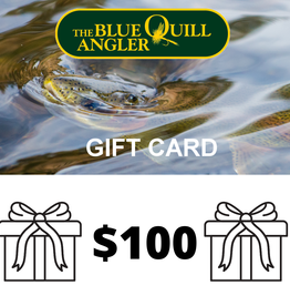 Retail Gift Cards $100