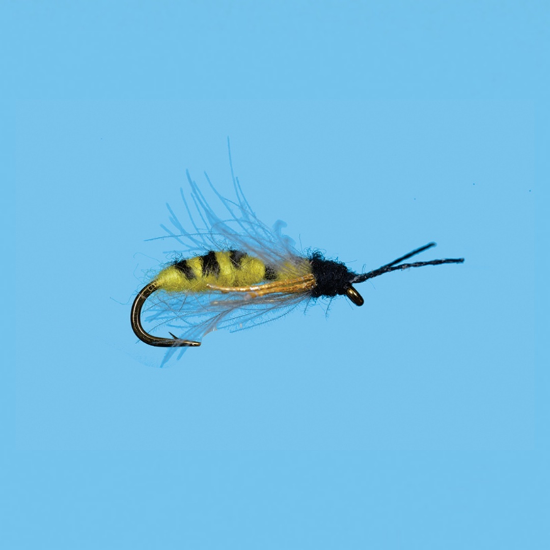 Drowning Yellow Jacket #12