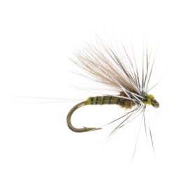 UMPQUA Low Water Baetis