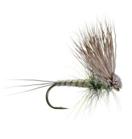 UMPQUA Hairwing Dun Green Drake