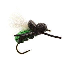 UMPQUA Tim's Beetle