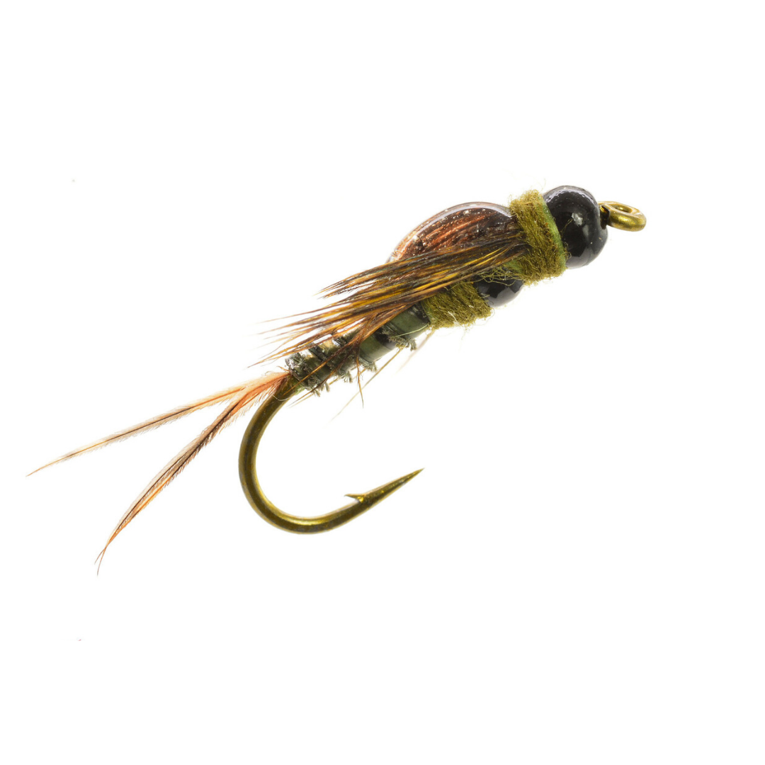 UMPQUA Two Bit Drake - Green
