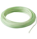 RIO PRODUCTS Rio Gold Fly Line - Max Cast - Max Float
