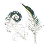 HARELINE Peacock Sword