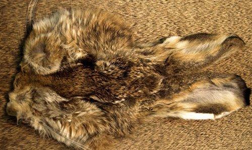 NATURES SPIRIT Natures Spirit Premium Hares Mask