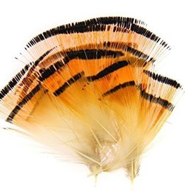 HARELINE Golden Pheasant Tippets - Medium