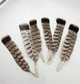 BLUE QUILL ANGLER Grouse Tails - Grey Phase