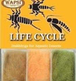WAPSI Life Cycle Dubbing - Nymph