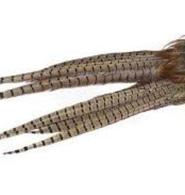 WAPSI Ringneck Pheasant Tail Clumps