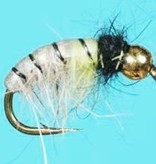 RHYACOPHIA CZECH NYMPH - TUNGSTEN BEAD