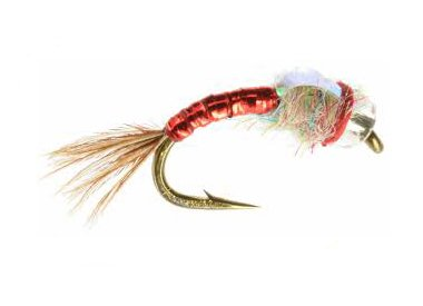 UMPQUA RAINBOW WARRIOR - PER 3