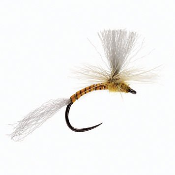 Para Emerger - Barbless