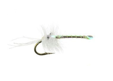 UMPQUA Mayers Mysis Shrimp
