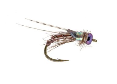 UMPQUA Little Brown Bug