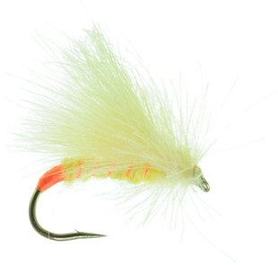 UMPQUA Corn Fed Sally