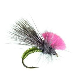 UMPQUA CLOWN SHOE CADDIS - PER 3