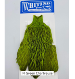 WHITING FARMS, INC Whiting Freshwater Streamer Hen Cape