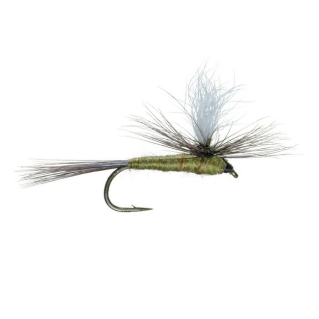UMPQUA Parachute - Blue Olive