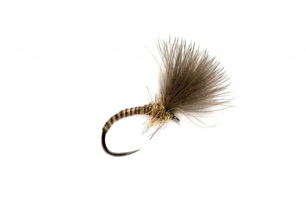 NATURAL QUILL CDC EMERGER - BARBLESS