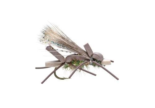 UMPQUA Amys Ant