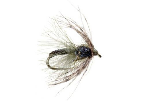 UMPQUA Swing Caddis - Tungsten