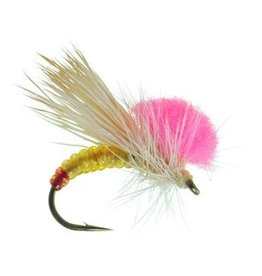 UMPQUA CLOWN SHOE SALLY - PER 3
