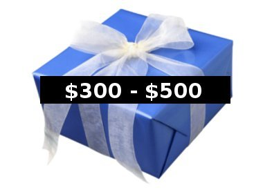 Gifts $300-$500