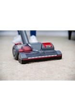 Regina Regina Cordless Upright Vacuum