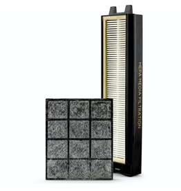 Riccar Riccar R25P HEPA & Granulated Charcoal Filter Set