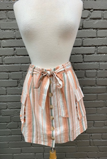 Skirt Penny Multi Stripe Button Skirt