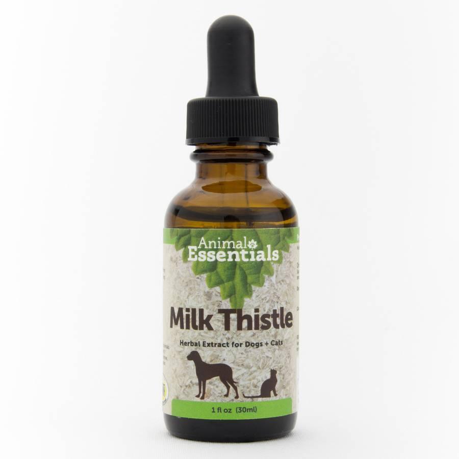 Animal Essentials Animal Essentials Milk Thistle, 1 oz bottle