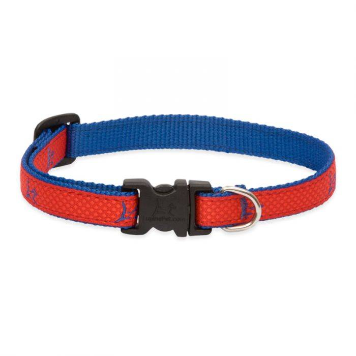 """Lupine Lupine Club- Derby Red 1/2"""" Width Collar Small 8-12"""""""
