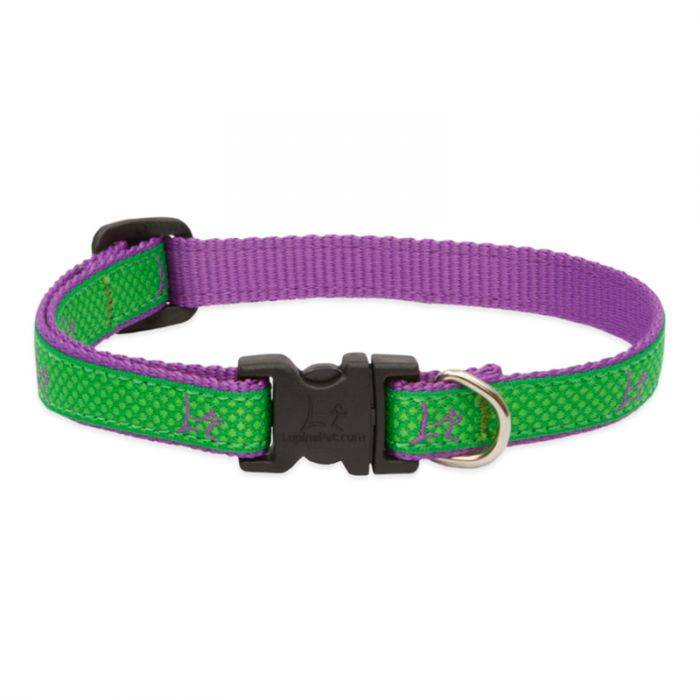 "Lupine Lupine Club - Augusta Green 1/2"" Width Collar Small 8-12"""