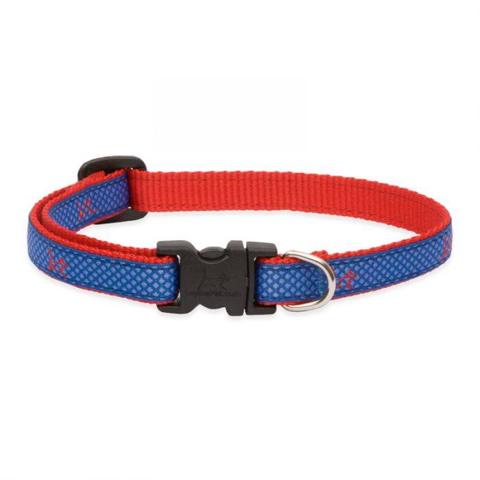 "Lupine Lupine Club - Newport Blue  1"" Width Collar Large 16-28"""