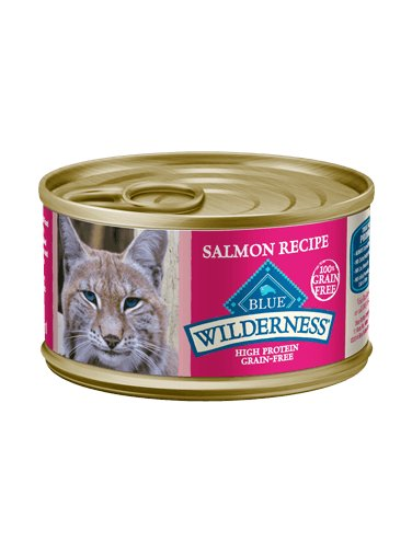 Blue Buffalo Blue Wilderness Salmon Recipe, 5.5 oz can Product Image